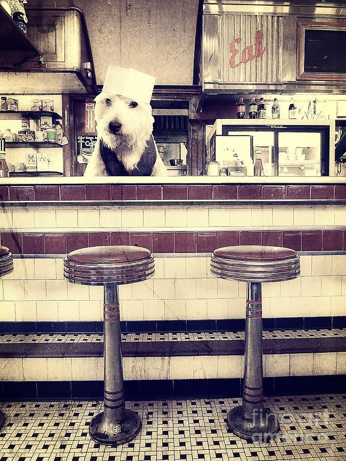 Diner Photograph - Soda Jerk by Edward Fielding