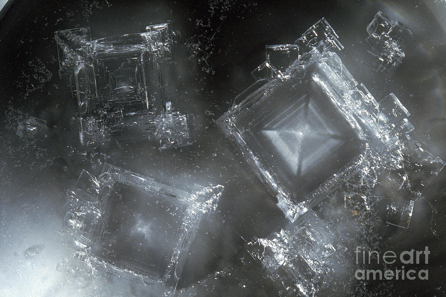 Sodium Hydroxide Photograph - Sodium Hydroxide Crystals by Charles D Winters