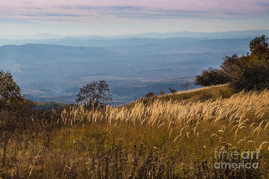 Autumn Photograph - Sofia Valley From Vitosha Mountain October Early Twilight by Jivko Nakev