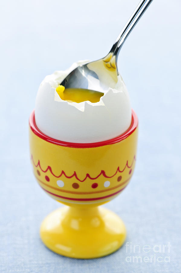 Egg Photograph - Soft Boiled Egg In Cup by Elena Elisseeva