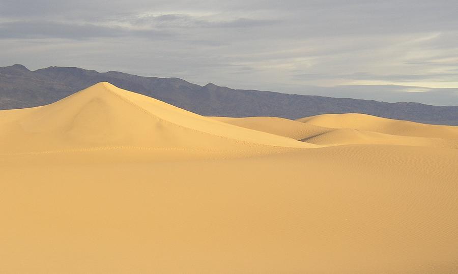 soft Dunes Photograph by Jenny Fish