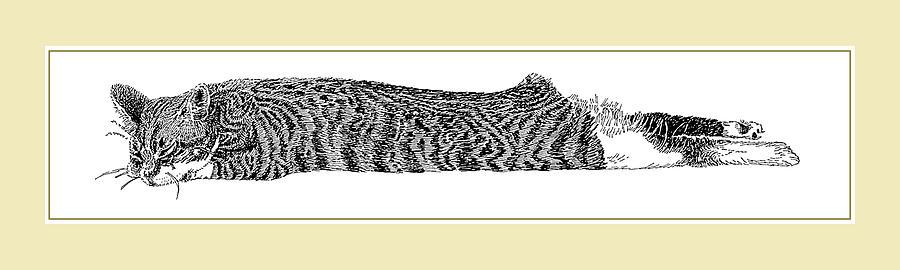 Soft Kitty Warm Kitty Drawing by Jack Pumphrey