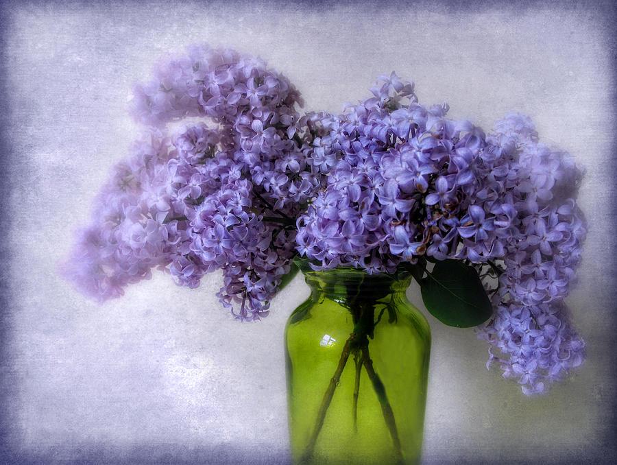 Flowers Photograph - Soft Spoken by Jessica Jenney