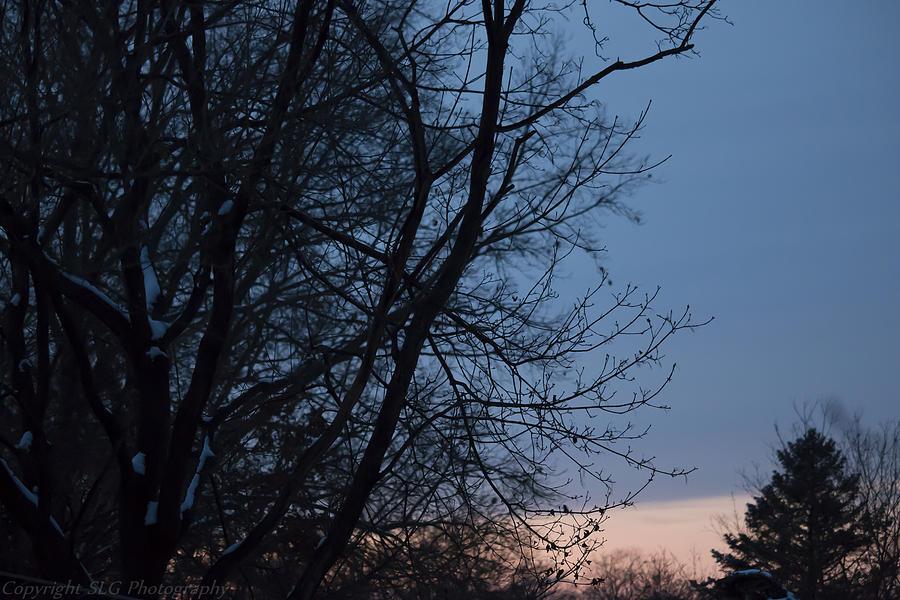Light Photograph - Soft Sunset by Stacie  Goodloe