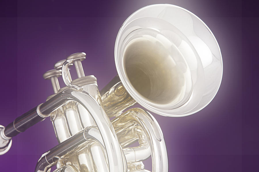 Cornet Photograph - Soft Trumpet On Purple by M K  Miller