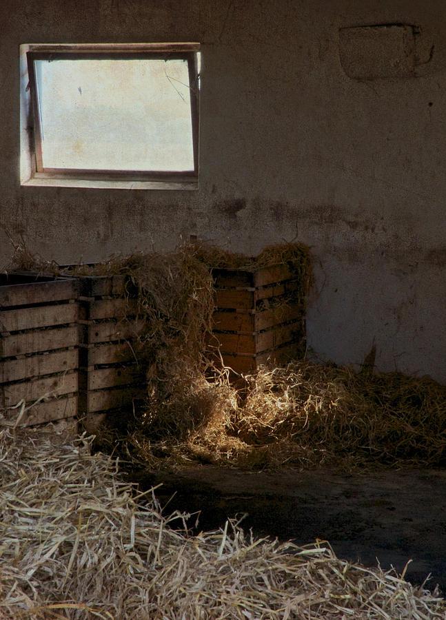 Sunlight Photograph - Softly The Sun by Odd Jeppesen
