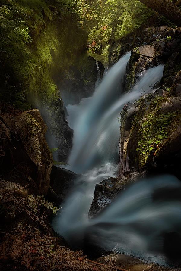 Landscape Photograph - Sol Duc by Louise Yu
