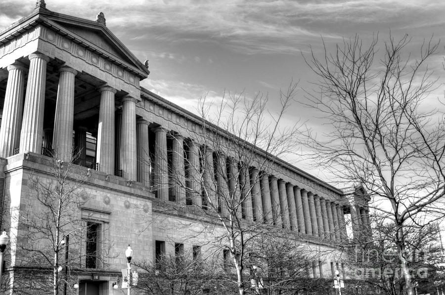 Hdr Photograph - Soldier Field In Black And White by David Bearden