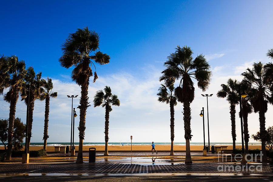 Solitary jogger on the promenade of Valencia in the winter sunsh by Peter Noyce