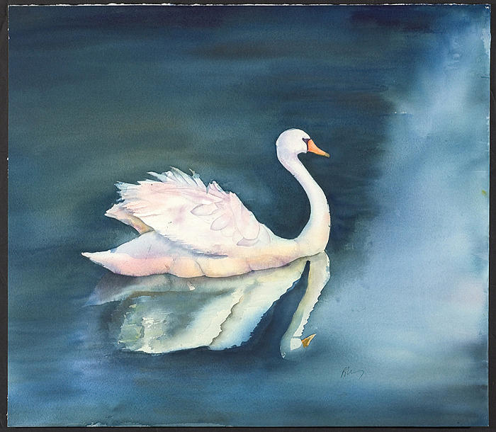 Swan Painting - Solitary Swan by Bonny Lundy