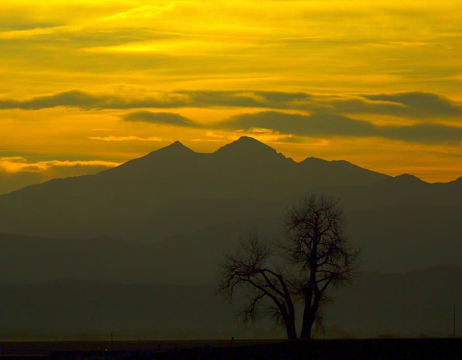 Longs Peak Photograph - Solo Tree With Longs Peak by Rebecca Adams