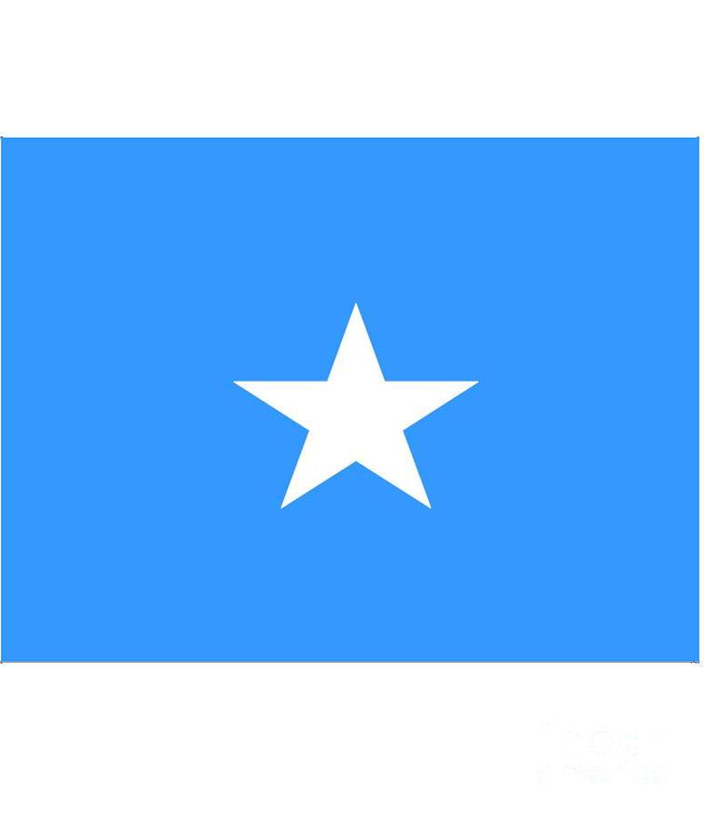 Somalia Digital Art - Somalia Flag by Frederick Holiday