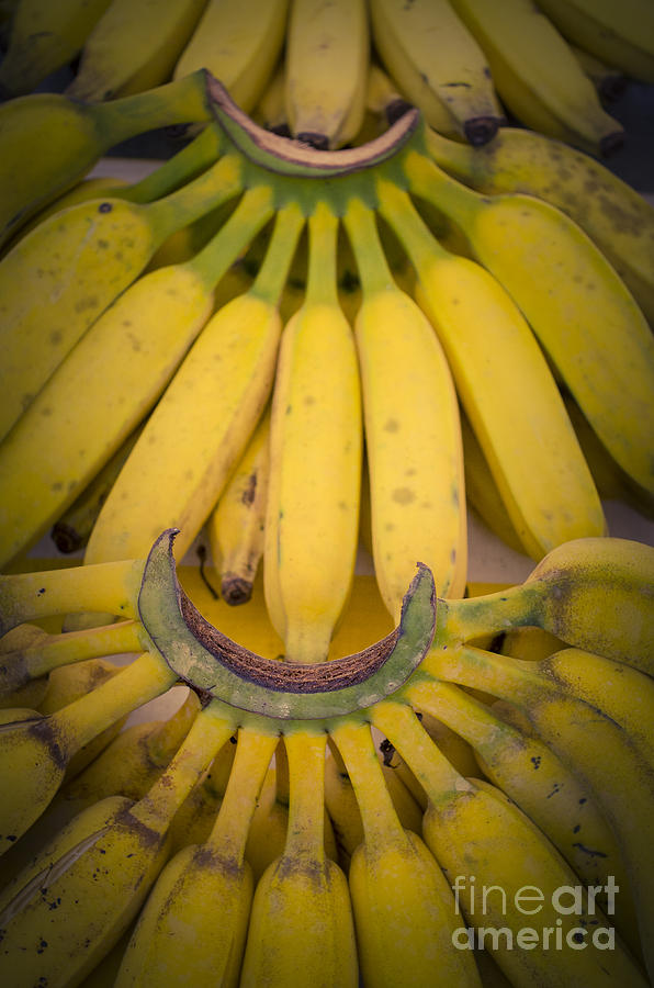 Banana Photograph - Some Fresh Bananas On A Street Fair In Brazil by Ricardo Lisboa