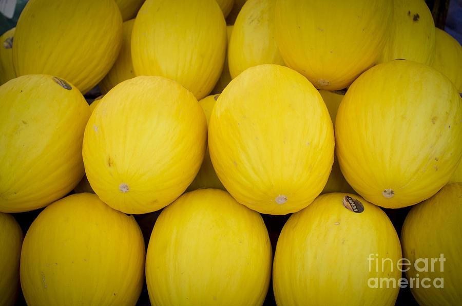 Melon Photograph - Some Fresh Melons On A Street Fair In Brazil by Ricardo Lisboa