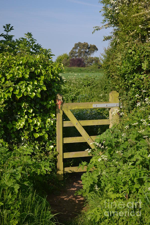 Gate Photograph - Somerset Countryside Gate Uk by Rene Triay Photography