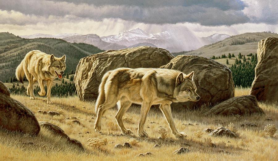 Wildlife Painting - Something On The Wind by Paul Krapf