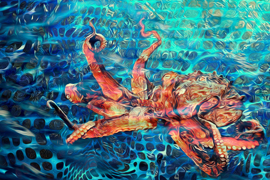 Octopus Painting - Somethins In The Net by Jack Zulli
