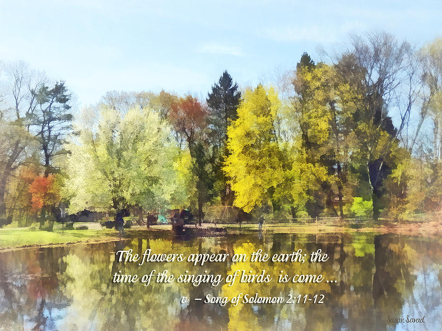 Religious Photograph - Song Of Solomon 2 11-12 -  The Flowers Appear  by Susan Savad