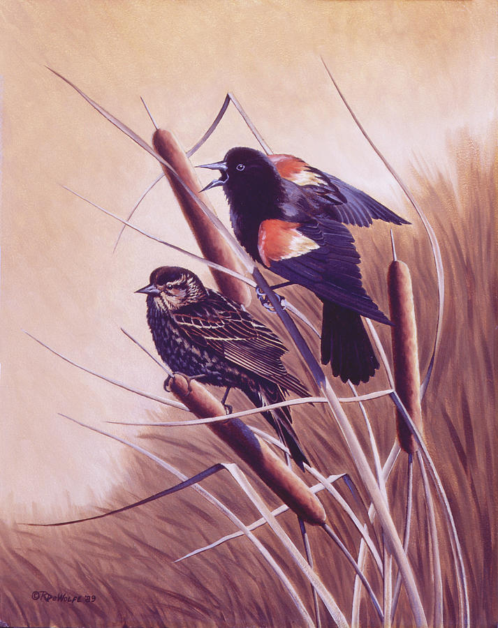Red-winged Blackbird Painting - Song Of The Marsh by Richard De Wolfe
