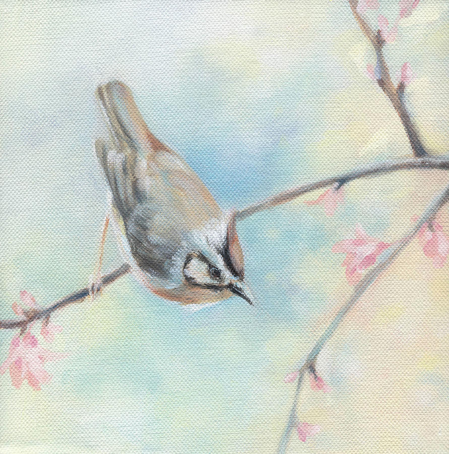 Bird Painting - Songbird by Natasha Denger