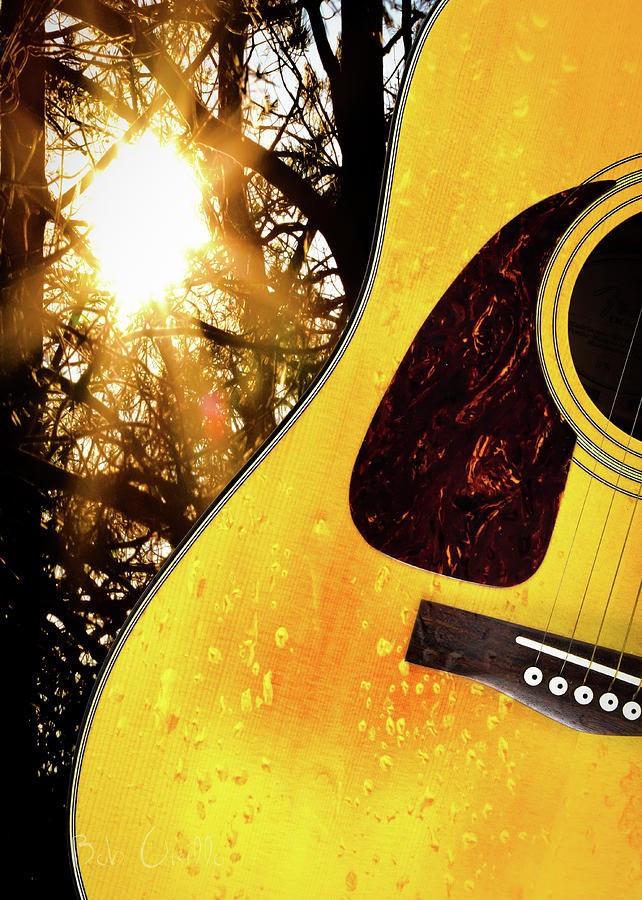 Guitar Photograph - Songs From The Wood by Bob Orsillo
