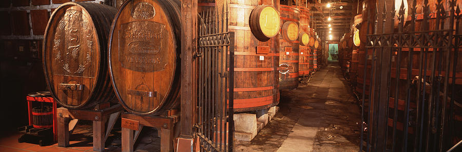 Color Image Photograph - Sonoma Wine Country Sebastinai Wine by Panoramic Images