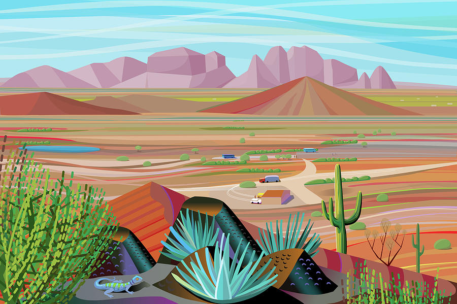 Sonora Desert Landscape Looking Out Photograph by Charles Harker