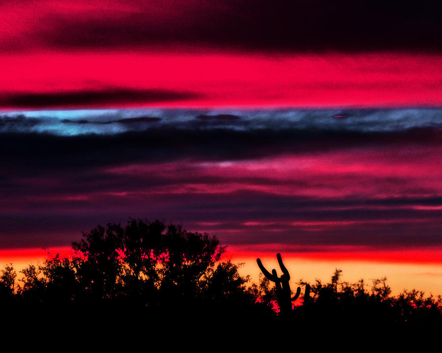 Sunset Photograph - Sonoran Sunset Tucson Desert by Jon Van Gilder