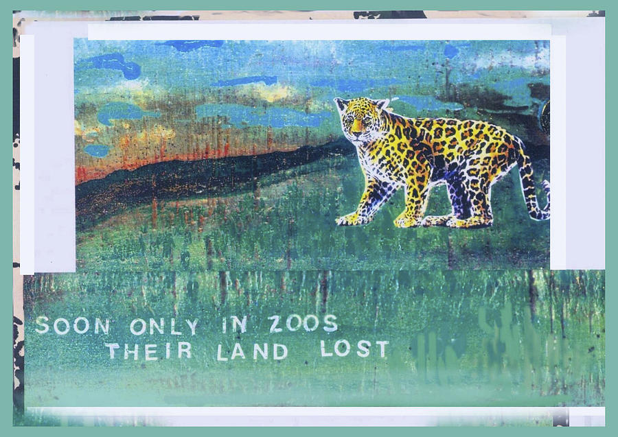 Ecology Mixed Media - Soon Only In Zoos  Their Land Lost by Mary Ann  Leitch