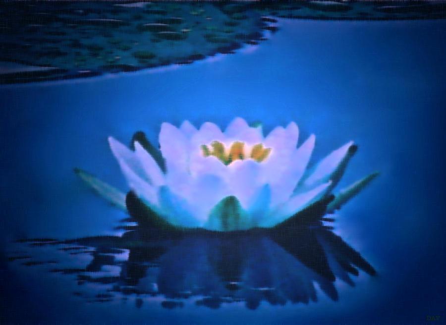 Royal Waterlily Painting - Sooth Serenity  by Debra     Vatalaro