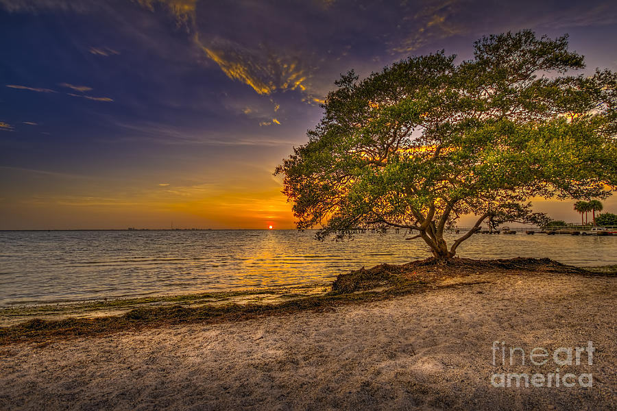 Florida Sunsets Photograph - Soothing Light by Marvin Spates