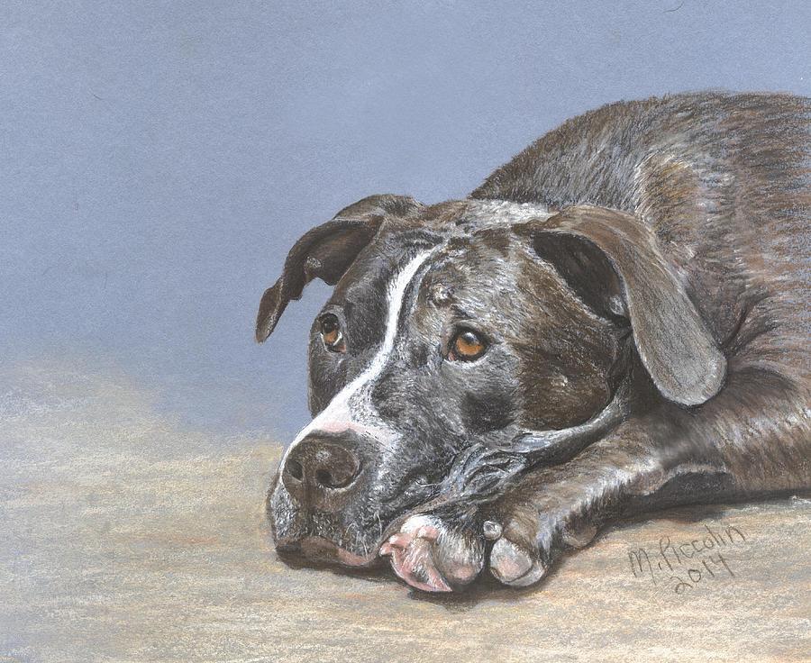 Dog Pastel - Sophie by Marlene Piccolin