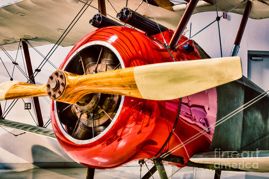Aircraft Photograph - Sopwith Camel by Inge Johnsson