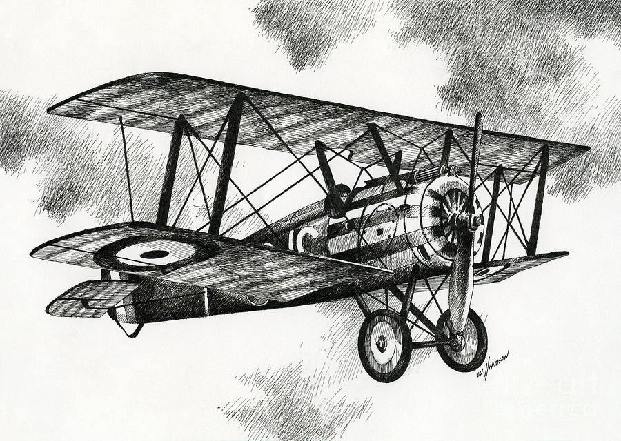 Sopwith F1 Camel 1917 Drawing By James Williamson