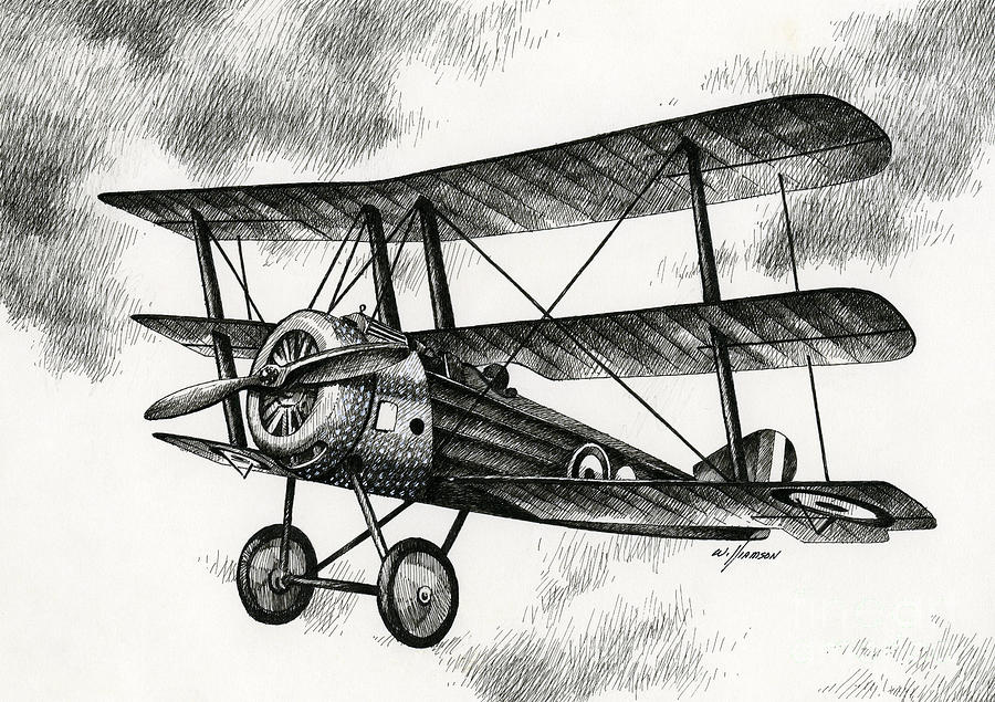 Sopwith Triplane 1917 Drawing By James Williamson