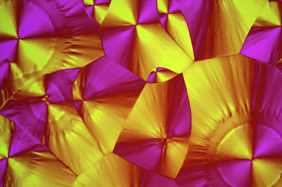 Light Micrograph Photograph - Sorbitol Crystals by John Durham