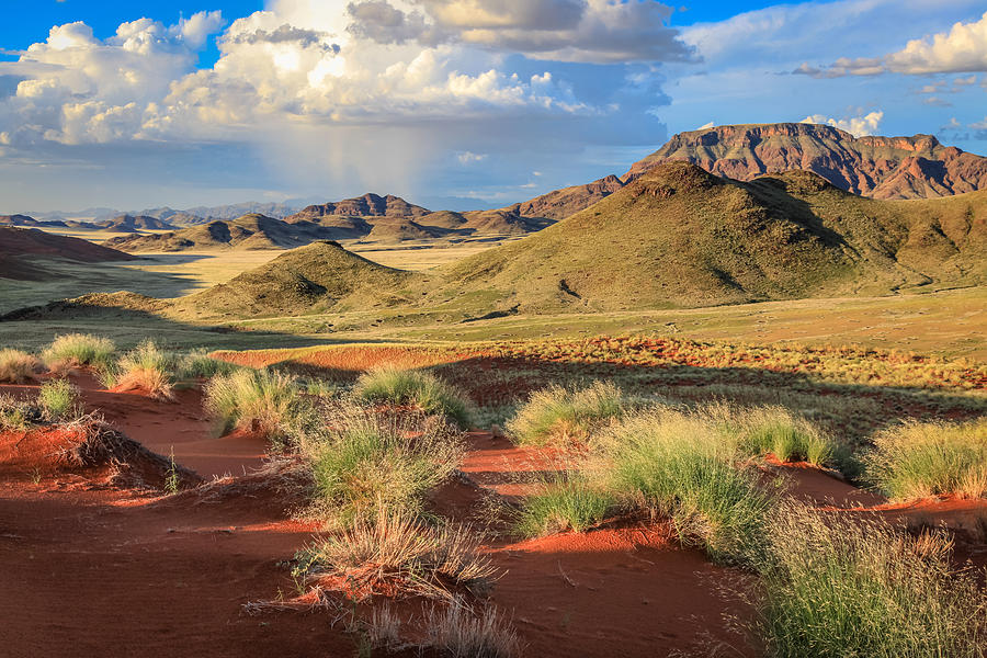 Sossulvei Namibia Afternoon Photograph by Gregory Daley  MPSA