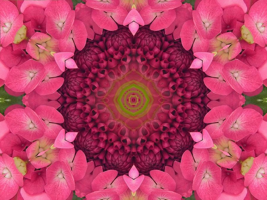Soul Sister Mandala by Diane Lynn Hix