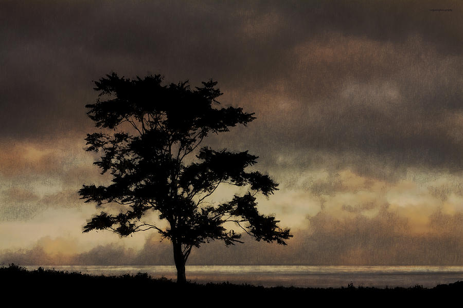 Ron Jones Photograph - Sound Light by Ron Jones