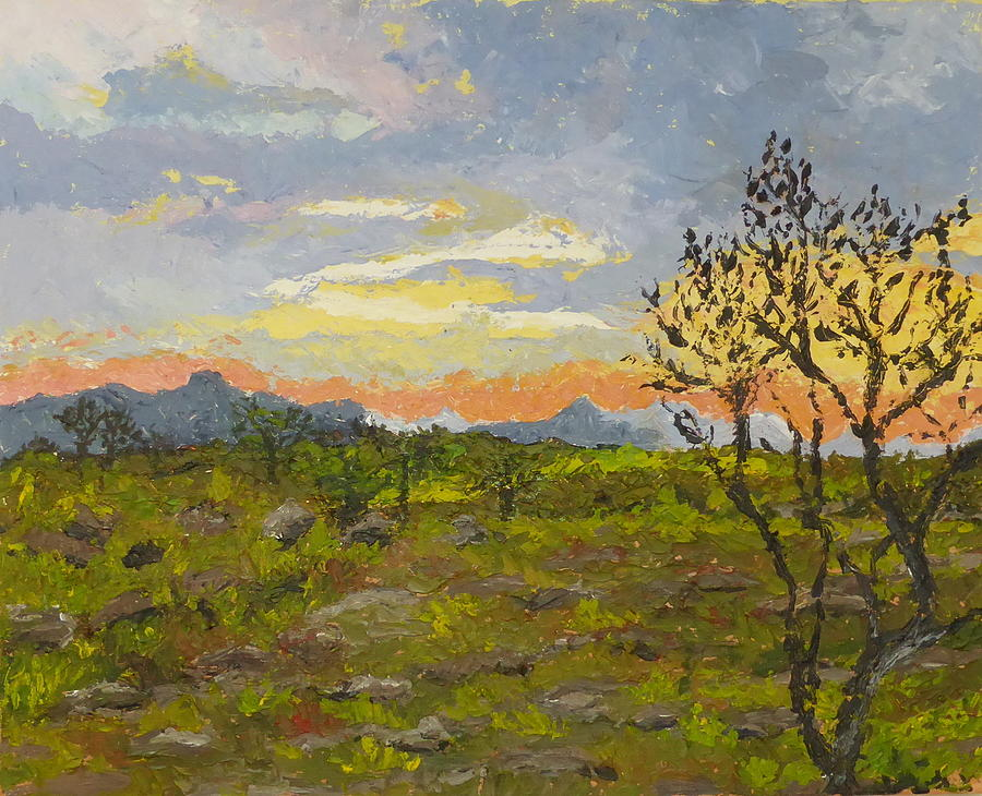 Landscape Painting - South African Sunset by Diane Arlitt