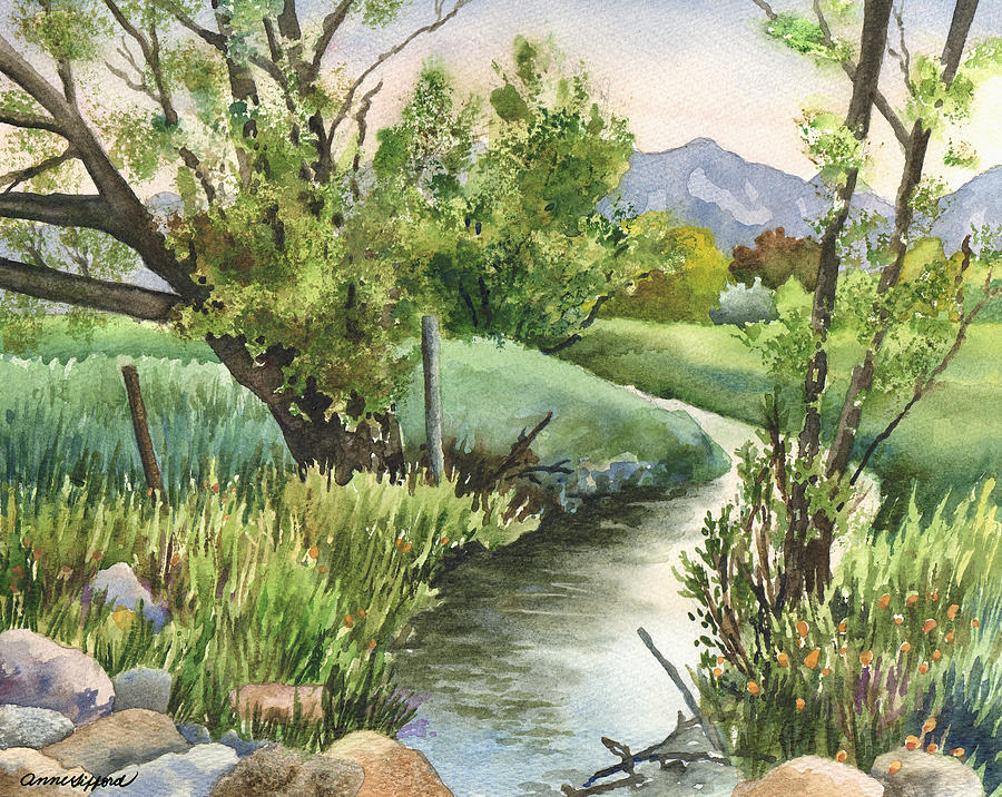 Landscape Painting Painting - South Boulder Creek by Anne Gifford