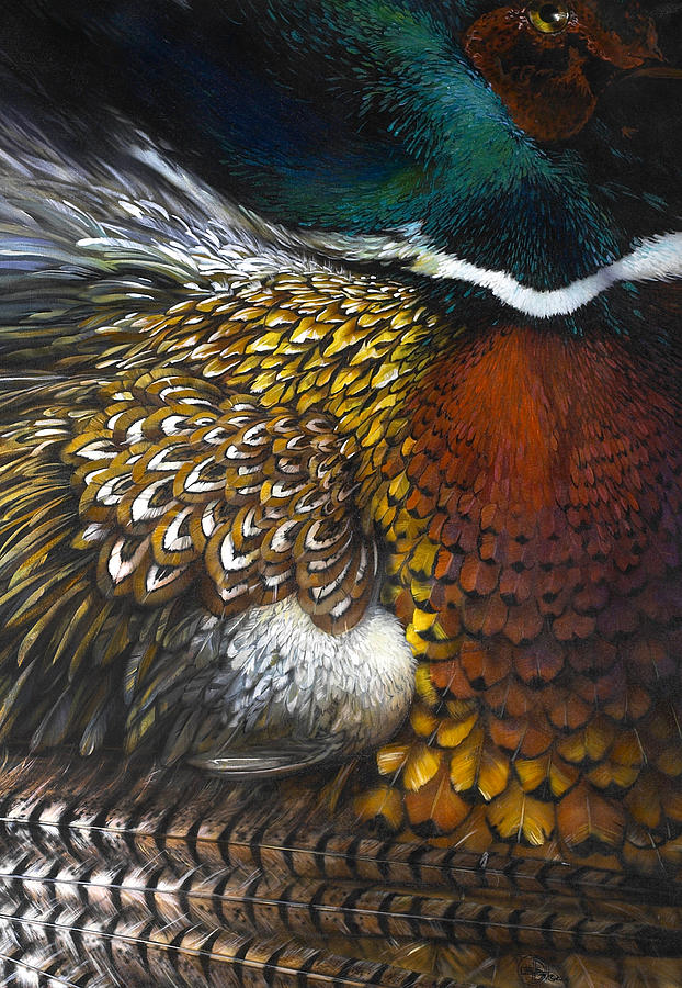 Pheasant Painting - South Dakota Plumes by Lynette Yencho