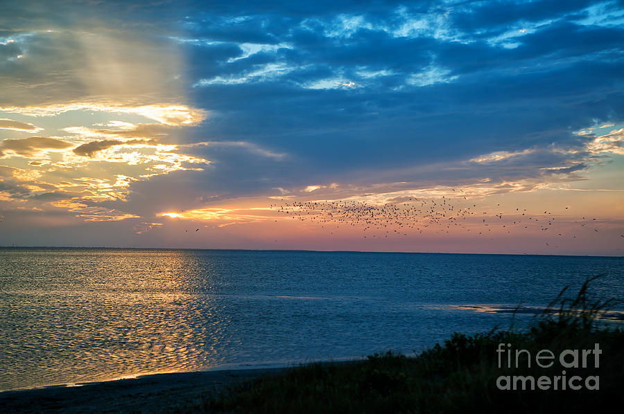 Sunset Photograph - South Padre Island Texas by Tammy Smith