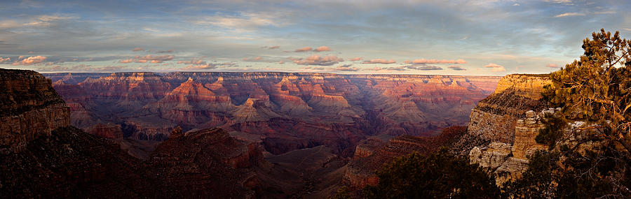 Grand Canyon Photograph - South Rim of the Grand Canyon by Mark Hammon