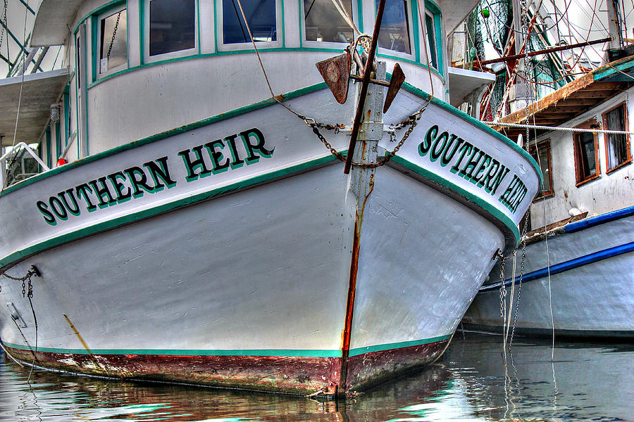 Alabama Wild Shrimp Photograph - Southern Heir by Lynn Jordan
