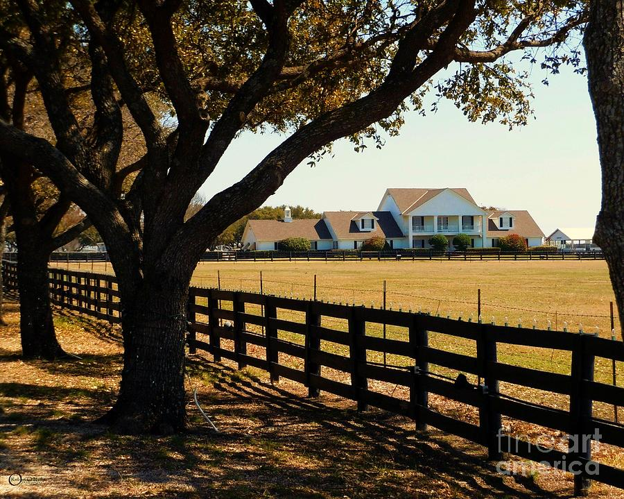 Southfork Ranch Photograph - Southfork Ranch - Across The Pasture by Robert ONeil