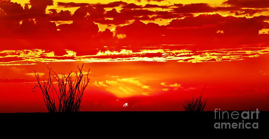 Arizona Photograph - Southwest Sunset by Robert Bales