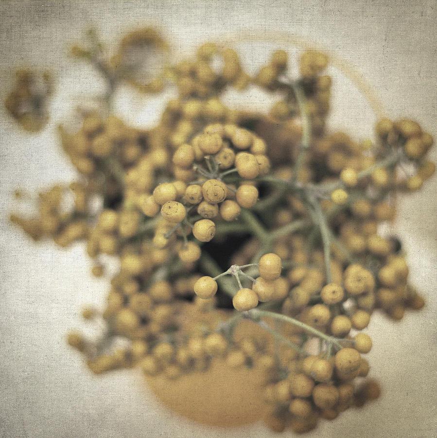 Still Life Photograph - Souvenirs De Demain II by Taylan Apukovska