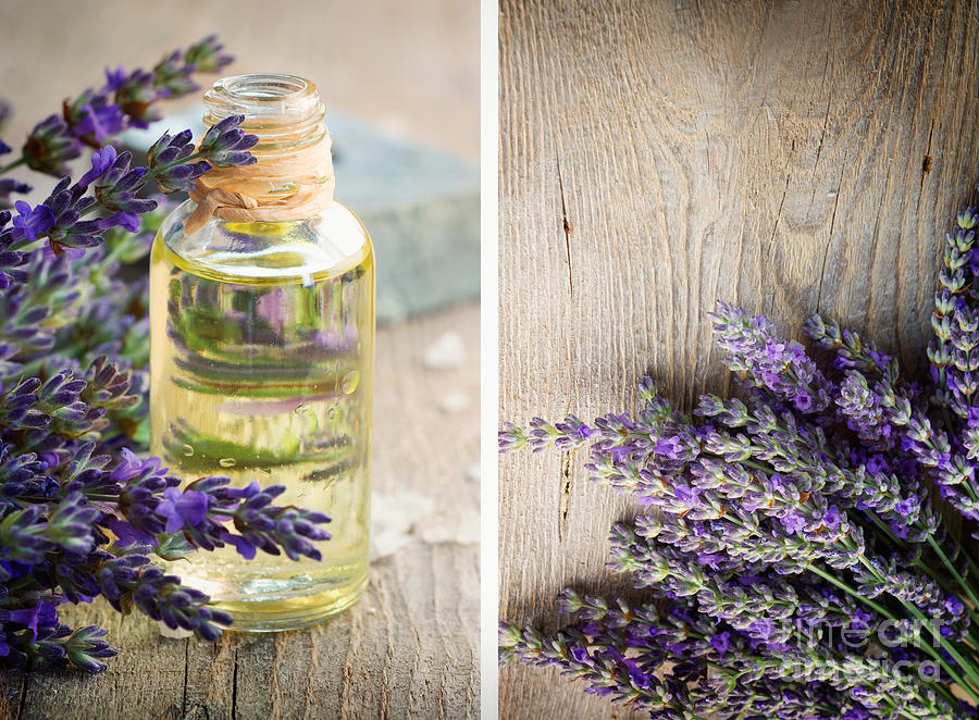 Aroma Photograph - Spa With Lavender  by Mythja  Photography