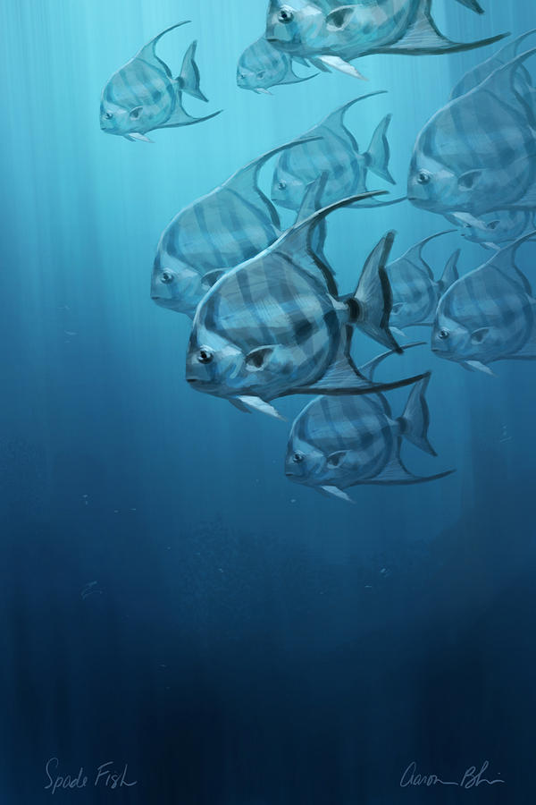 Fish Digital Art - Spade Fish by Aaron Blaise